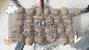 カルビーキャンペーン大収穫祭2018!今年で5回目の当選!コツ紹介